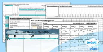 Art: Wildlife Birds UKS2 Unit Assessment Pack