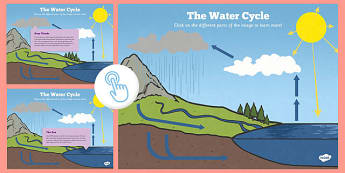Year 4 Interactive Science PDF The Water Cycle - year 4, interactive, science, pdf, water cycle