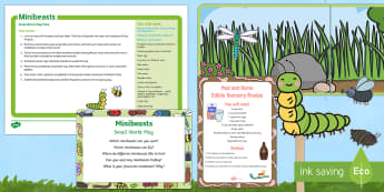 Minibeasts Small World Play Idea and Printable Resource Pack - Minibeasts, insects, smallworld, role-play, imaginary play, insects, EYFS, mud, recipe, worms