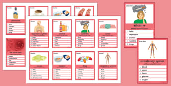 Health Can You Guess? Cards - Health, Drugs, Tobacco, Respiratory System, Circulatory System, Stimulant, Depressant