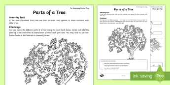 Parts of a Tree Activity Sheet - tree parts, tree knowledge, tree research, trunk, branch, amazing fact august, worksheet