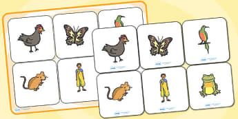 Handa's Hen Matching Cards and Board - handa's hen, handas hen, handas hen picture matching cards, handas hend matching game, handas hen sen activity, sen