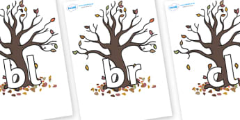 Initial Letter Blends on Autumn Trees - Initial Letters, initial letter, letter blend, letter blends, consonant, consonants, digraph, trigraph, literacy, alphabet, letters, foundation stage literacy