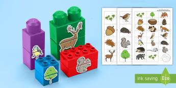 لعبة مطابقة المكعبات عن موضوع  - الغابات والأحراش  -  السنوات الأولى، المرحلة الأساس، المكعبات البلاستيكية