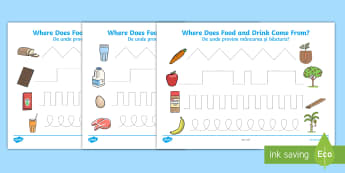Where Does Food and Water Come from Pencil Control Activity Sheets English/Romanian - worksheet, pencil control, fine motor skills, activity sheet, EAL