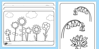 Flowers Colouring Sheets - colouring sheets, flowers colouring sheets, coluring in flowers, colouring worksheets, colour in flowers