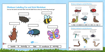 Minibeasts Scene Labelling Cut and Stick Worksheet - minibeast