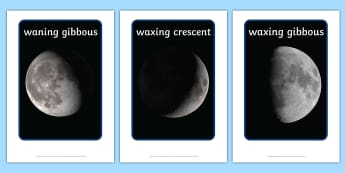 Phases of the Moon Display Photos - display, photos, photo, phases of the moon, the moon, space, moon, moon display photos, set of photos, photos for display, classroom display