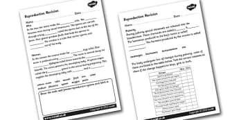 Reproductive Revision Worksheet - reproduction, revising, revise