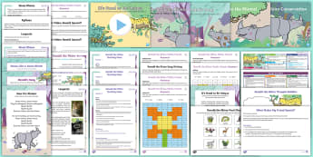 Year 2 Ronald the Rhino Resource Pack - cross-curricular, planning, theme, activities, twinkl fiction