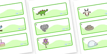 Monkey Puzzle Tree Themed Editable Drawer-Peg-Name Labels - Themed Classroom Label Templates, Resource Labels, Name Labels, Editable Labels, Drawer Labels, Coat Peg Labels, Peg Label, KS1 Labels, Foundation Labels, Foundation Stage Labels, Teaching L