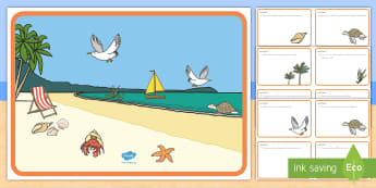 Beach Habitat Scene and Question Cards - Ocean, Sea, Pre-K Thinking Skills, Kindergarten Thinking Skills