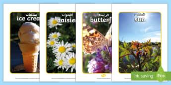 Summer Display Photos Arabic/English - Summer Display Photos - Summer, seasons, photo, display photo, beach, sun, flowers, ice cream, sea,