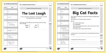 Year 1 Reading Assessment Paper 1 Term 1 - formative, summative, diagnostic, fiction, non-fiction