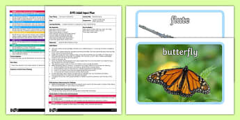 Butterfly Dance EYFS Adult Input Plan and Resource Pack - dance