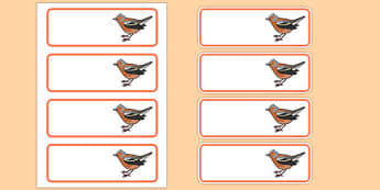Chaffinch Editable Drawer Peg Name Labels - chaffinch, editable, drawer, peg, name, labels, display