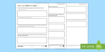 What's in a Name? Activity Sheet To Support Teaching On 'Stone Cold' - worksheet, Robert Swindell, Link, Shelter, names, connotations, homeless, theme, ginger, sappho