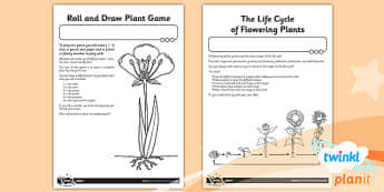 PlanIt - Science Year 3 - Plants Unit Home Learning Tasks - planit
