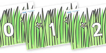 Numbers 0-50 on Wavy Grass - 0-50, foundation stage numeracy, Number recognition, Number flashcards, counting, number frieze, Display numbers, number posters