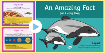 An Amazing Fact a Day August PowerPoint - August, KS1, facts, morning activities, activity sheets