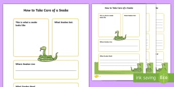 How To Take Care Of A Snake Fact File  - Pets, pet, EYFS, KS1, take, care, look, after, family, member, members, vet, vet surgery, surgery, i