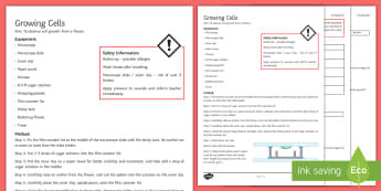 Growing Cells Investigation Instruction Sheet Print-Out - Investigation Help Sheet, science practical, method, instructions, plant, plant reproduction, pollen