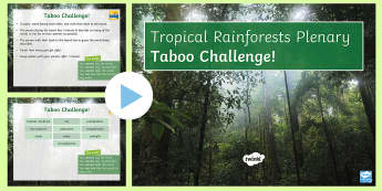 Rainforests Taboo Plenary PowerPoint Game - rainforests, taboo, game, plenary, ks3, quiz, tropical, water cycle, tropics