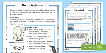 KS1 Winter Animals Differentiated Fact File - Winter 2016/17, weather, cold, freezing, fur, insulation, polar bear, penguin, blizzard, Arctic, Ant