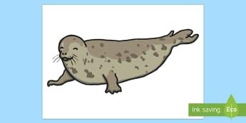 Antarctica Seal Large Display Cut-Out - Antarctica Seal Large Display Cut-Out- seal, cut out, antarctic, display, seals, antartica, antartci