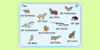 German Animals Word Mat -  animal, Germany, literacy, english