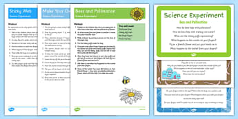 EYFS Minibeast Themed Science Experiments Resource Pack - bugs, creepy crawlies, insects