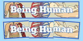 Being Human Display Banner - being human, display banner, display, banner, human