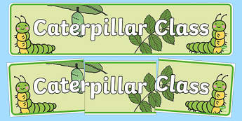 Caterpillar Class Display Banner - caterpillar class, class banner, class display, caterpillars, classroom banner, classroom areas signs, areas, display banner, display