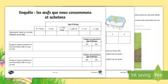 Fiche enquête : Les oeufs que nous achetons - poule, cycle de vie, sciences, cycle 3, hen, chicken, life cycle, KS2, CE2, CM1, CM2, oeufs, consomm