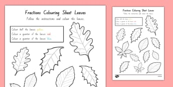 Fractions Colouring Sheet Leaves - nz, new zealand, leaf, trees, colour, colours