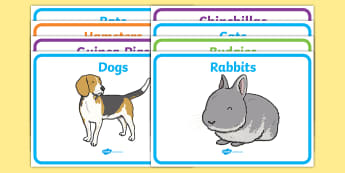 Editable Class Group Signs (Pets) - Pet, pets, group signs, group labels, group table signs, table sign, teaching groups, class group, class groups, table label