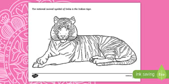 Indian Tiger Colouring Page - ESL Diwali Colouring