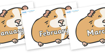 Months of the Year on Guinea Pigs - Months of the Year, Months poster, Months display, display, poster, frieze, Months, month, January, February, March, April, May, June, July, August, September