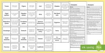 AQA Animal Organisation Word Loops - Word Loops, animal organisation, tissues , organs, digestive system, heart, vena cava