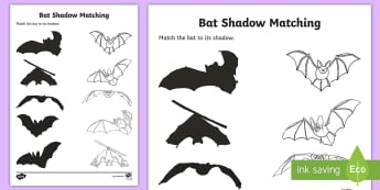 Bat Shadow Matching Activity Sheet - science, bats, mammals, activity sheet, shadow, matching,Irish, worksheet