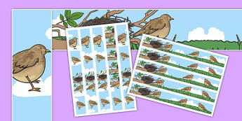 Skylark Themed A3 Display Borders - skylark, display borders, display, borders, class, bird