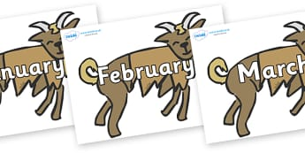 Months of the Year on Billy Goats Gruff - Months of the Year, Months poster, Months display, display, poster, frieze, Months, month, January, February, March, April, May, June, July, August, September