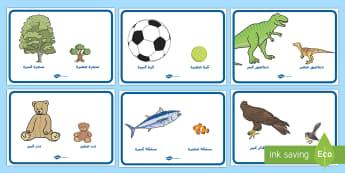 ملصقات للمقارنة بين الكبير والصغير - صغير، كبير، مقارنة، رياضيات، الأحجام، عربي، ملصقات,Arabi