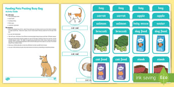 Feeding Pets Posting Busy Bag Resource Pack for Parents - EYFS Pets, Animals, National Pet Month, dog, cat, rabbit, guinea pig, snake, pet food
