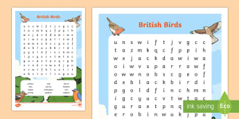 KS1 British Birds Word Search - KS1 , RSPB, school, bird, bird watch, bird names, bird wordsearch, British birds.