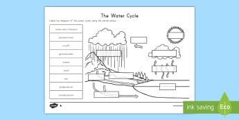 The Water Cycle Differentiated Activity Sheets - Water Cycle, Earth's Cycles, Evaporation, Condensation, Precipitation, Run-Off, worksheet