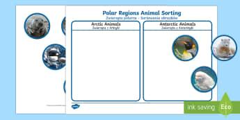 Polar Regions Animal Sorting Activity English/Polish - The Arctic, Polar Regions, north pole, south pole, explorers, orca, whale, penguin, polar bear, anta