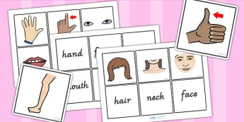 Parts Of The Body Word And Picture Matching Cards - body parts