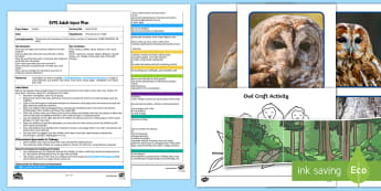 EYFS Owlets Craft Adult Input Plan and Resource Pack - EYFS Owlets, Owl Babies, Martin Waddell,  owl, nature, british, wildlife, nocturnal, night, animals,