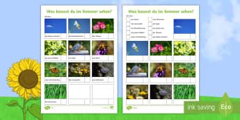 Summer Vocabulary Hunt Activity German  - Sommer, MFL, School Grounds, Languages, DAF, DAZ